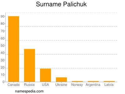 Surname Palichuk