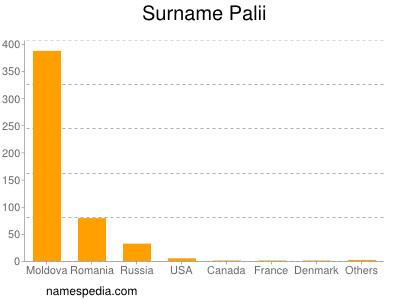 Surname Palii