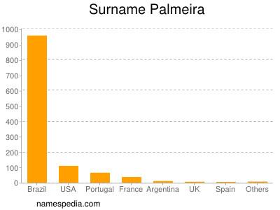 Surname Palmeira