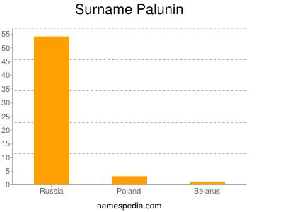 Surname Palunin