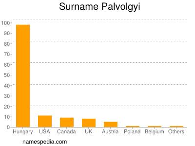 Surname Palvolgyi