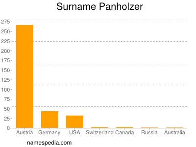 Surname Panholzer