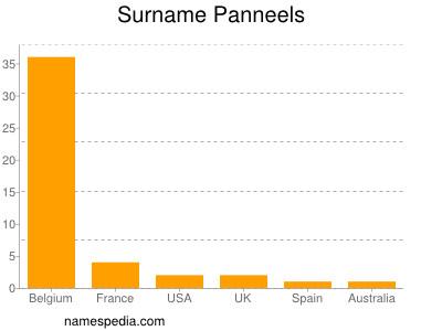 Surname Panneels