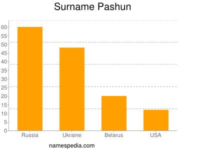 Surname Pashun