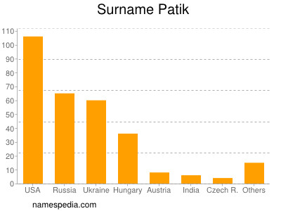 Surname Patik