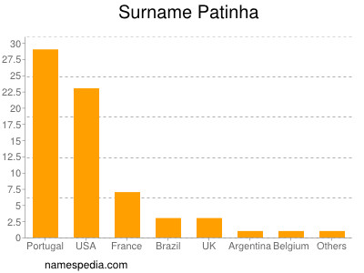Surname Patinha