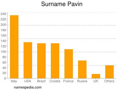 Surname Pavin