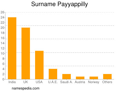 Surname Payyappilly