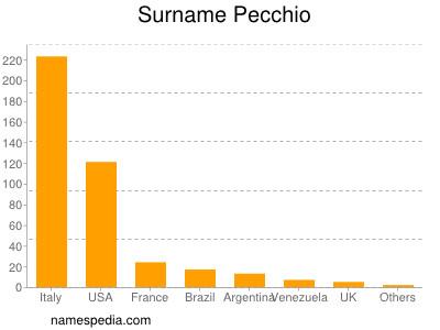 Surname Pecchio