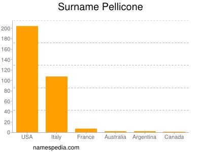 Surname Pellicone