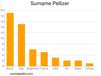 Surname Pellizer