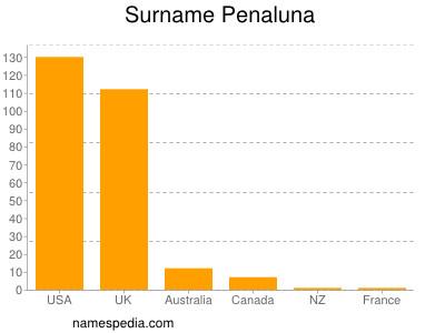 Surname Penaluna