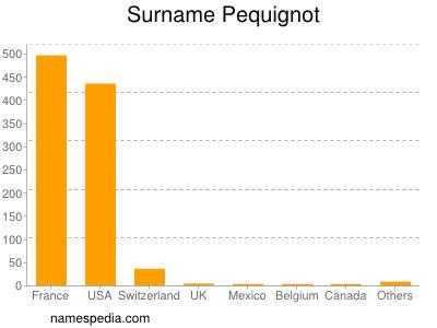 Surname Pequignot