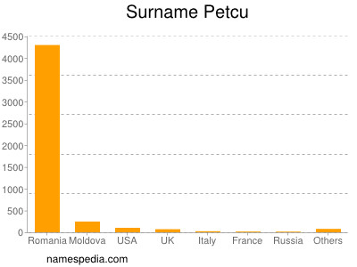 Surname Petcu