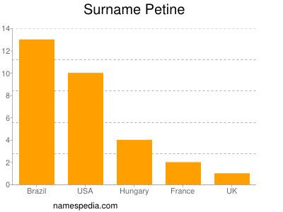 Surname Petine