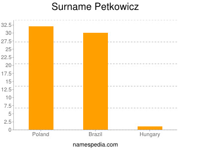 Surname Petkowicz
