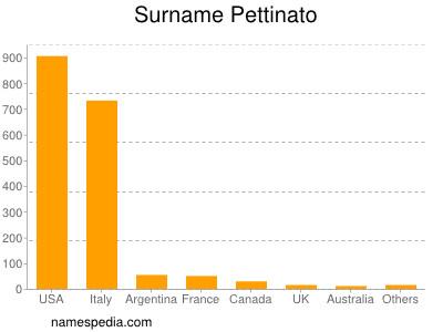 Surname Pettinato