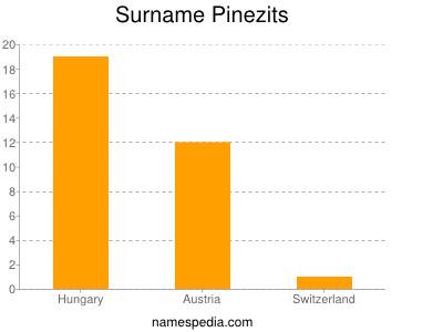 Surname Pinezits
