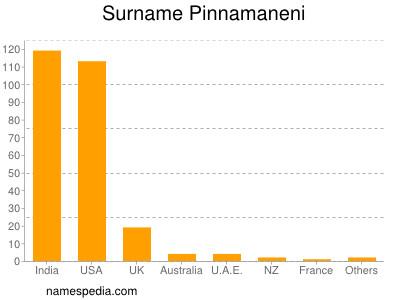 Surname Pinnamaneni