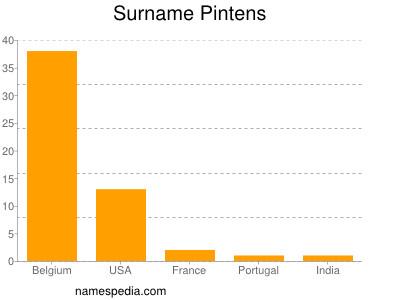 Surname Pintens