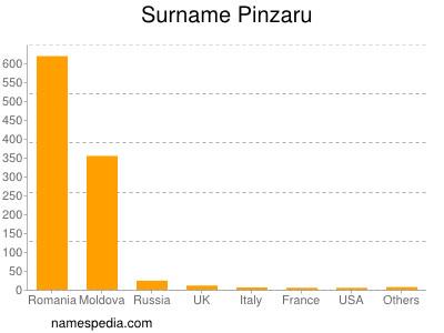 Surname Pinzaru