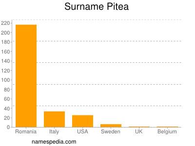 Surname Pitea