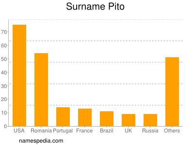Surname Pito