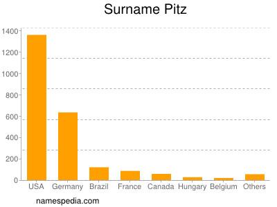 Surname Pitz