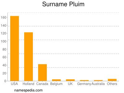 Surname Pluim