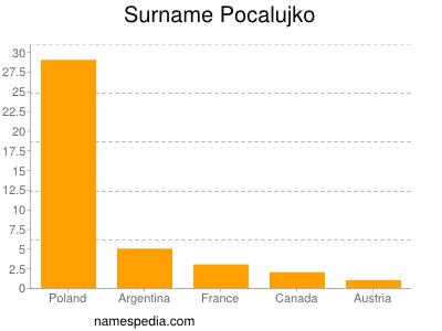 Surname Pocalujko