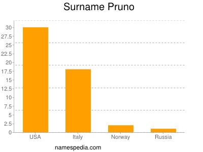 Surname Pruno