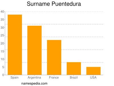 Surname Puentedura