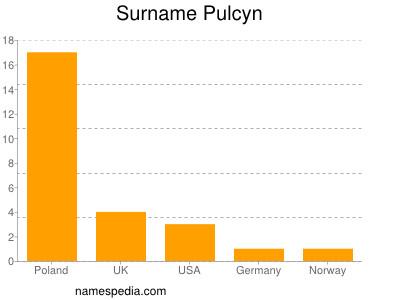 Surname Pulcyn
