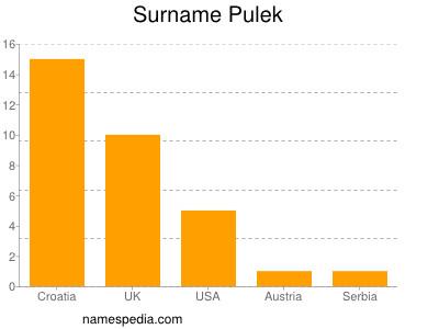 Surname Pulek