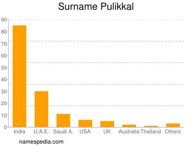 Surname Pulikkal