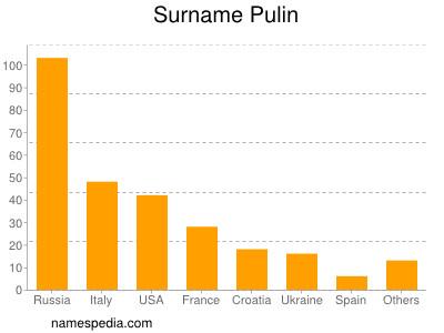Surname Pulin