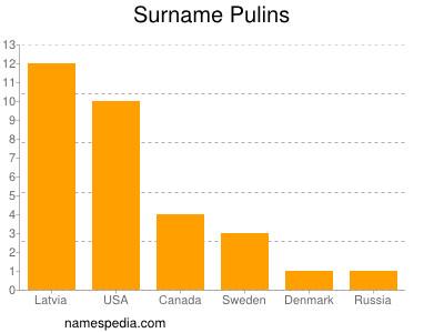 Surname Pulins