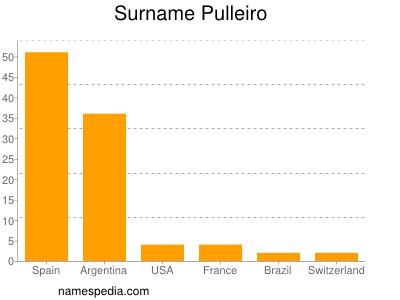 Surname Pulleiro