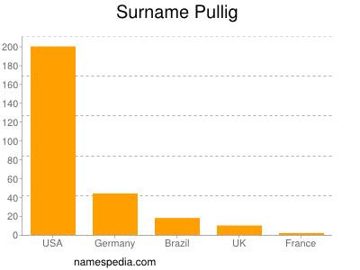 Surname Pullig