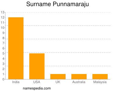 Surname Punnamaraju