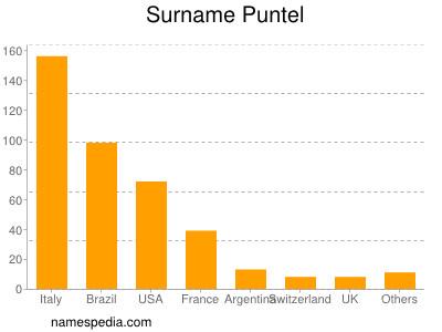 Surname Puntel