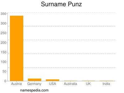 Surname Punz