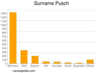 Surname Pusch