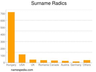 Surname Radics