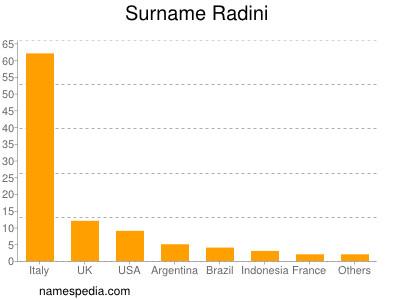 Surname Radini