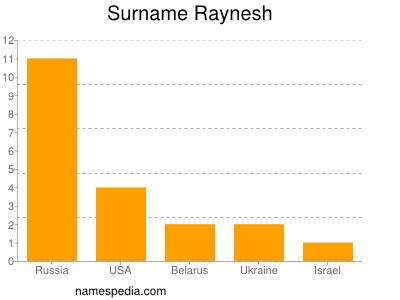 Surname Raynesh