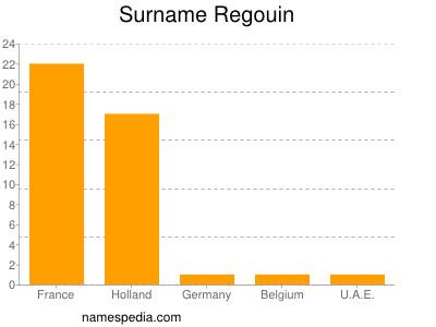 Surname Regouin