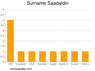 Surname Saadaldin
