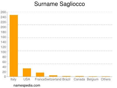 Surname Sagliocco