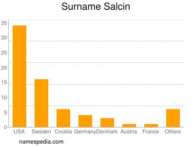 Surname Salcin